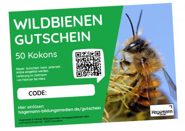 Nachbestell-Gutschein Wildbienen, für 50 Kokons