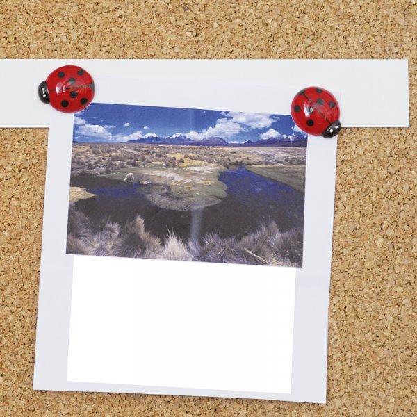 TimeTEX Magnet-Metall-Streifen, 5.000 x 35 mm