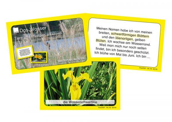 Kartenspiel: Tiere und Pflanzen erkennen