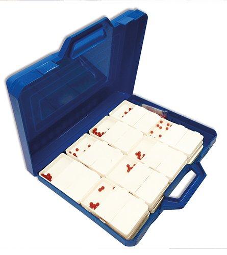 Klassensatz Flüster-Schüttelboxen weiß, 24 St. i. Koffer