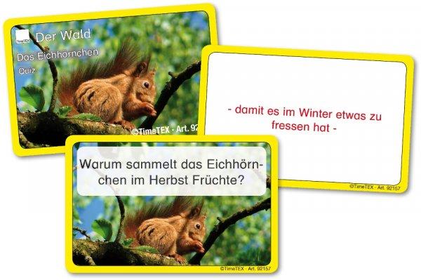 Kartenspiel Eichhörnchen