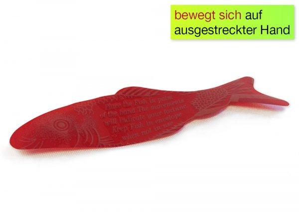 Wunderfisch