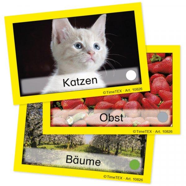 TimeTEX Team-Bildungs-Karten, 60-tlg. im Etui