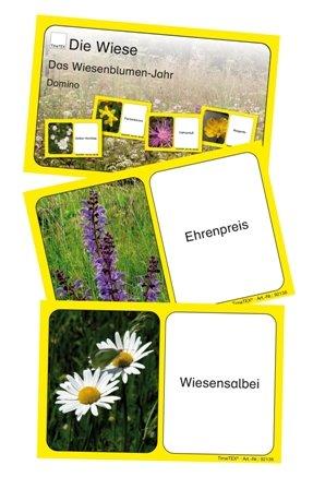 Kartenspiel Das Wiesenblumenjahr