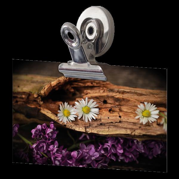 Set Magnet-Clips 25 mm ø, 3-tlg.