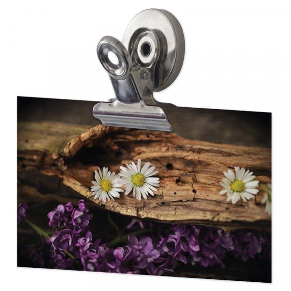 Set Magnet-Clips 31 mm, 3-tlg.